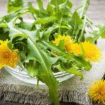 Păpădie remedii naturiste, sirop şi reţete