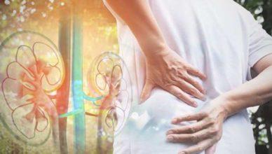 Remedii naturale pentru a menţine rinichii sănătoşi